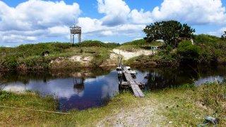 Randonnée sur l'île de Superagüi, Brésil