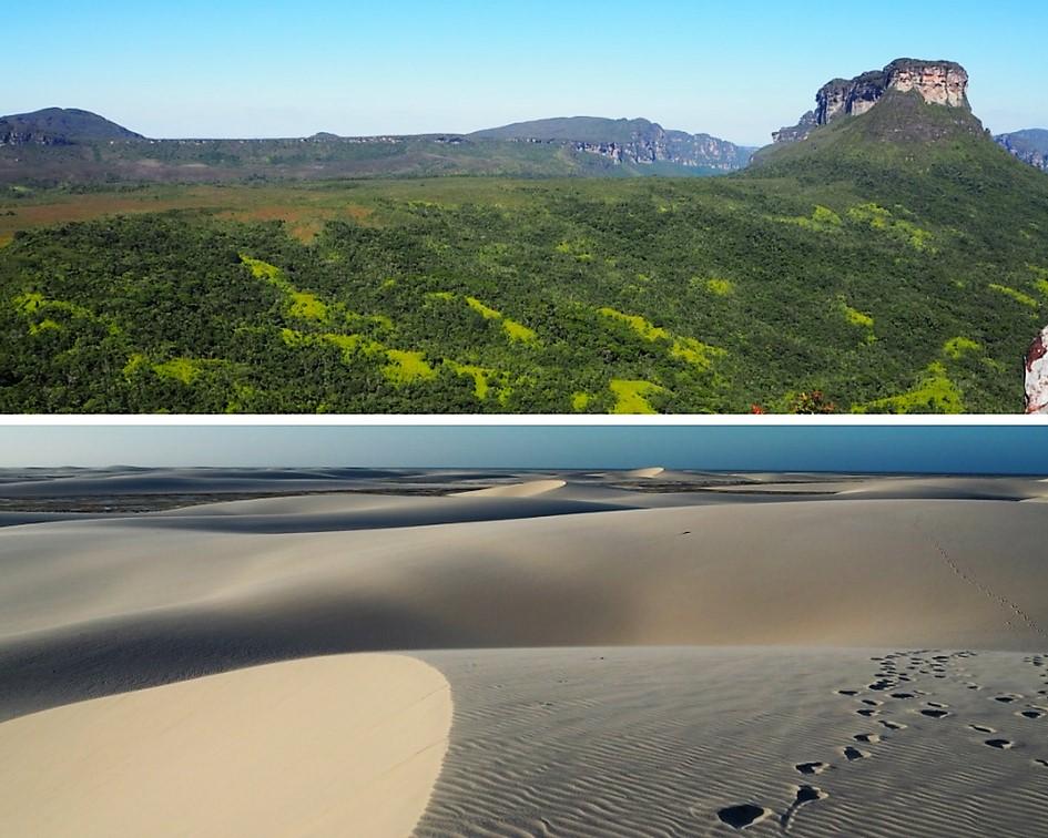 Des superficies XXL – voyage dans les parcs du Nordeste au Brésil