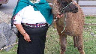 Musée du lama – Equateur