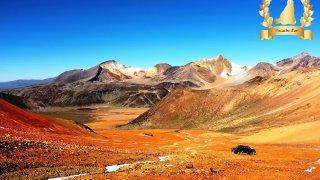 Chili : festival altiplano, course à la viscache d'or