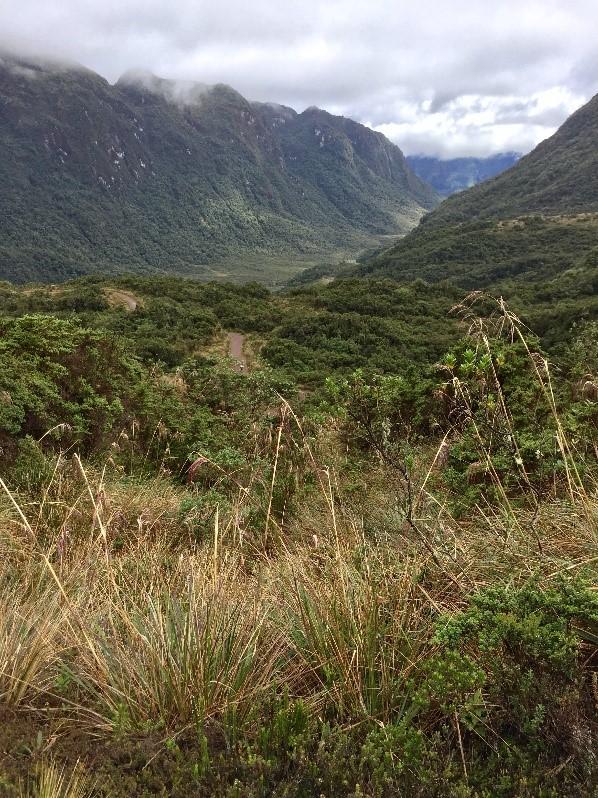 Vallée Papallacta