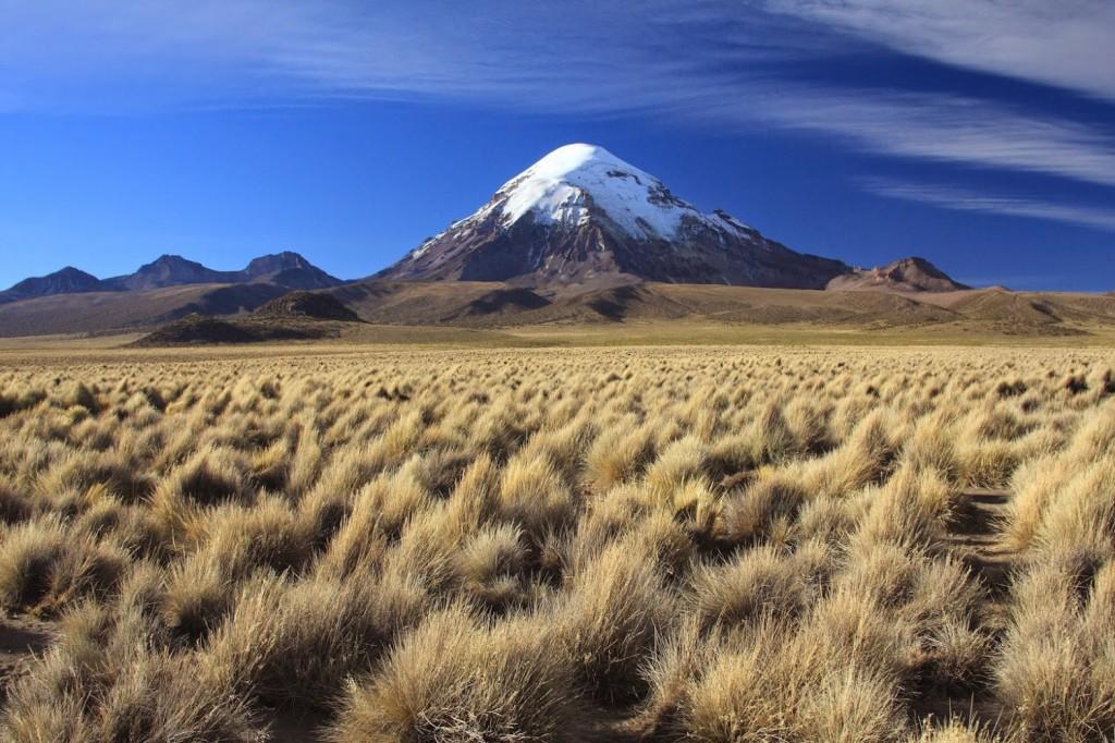 Parc National Sajama – Cordillère des Andes – Bolivie
