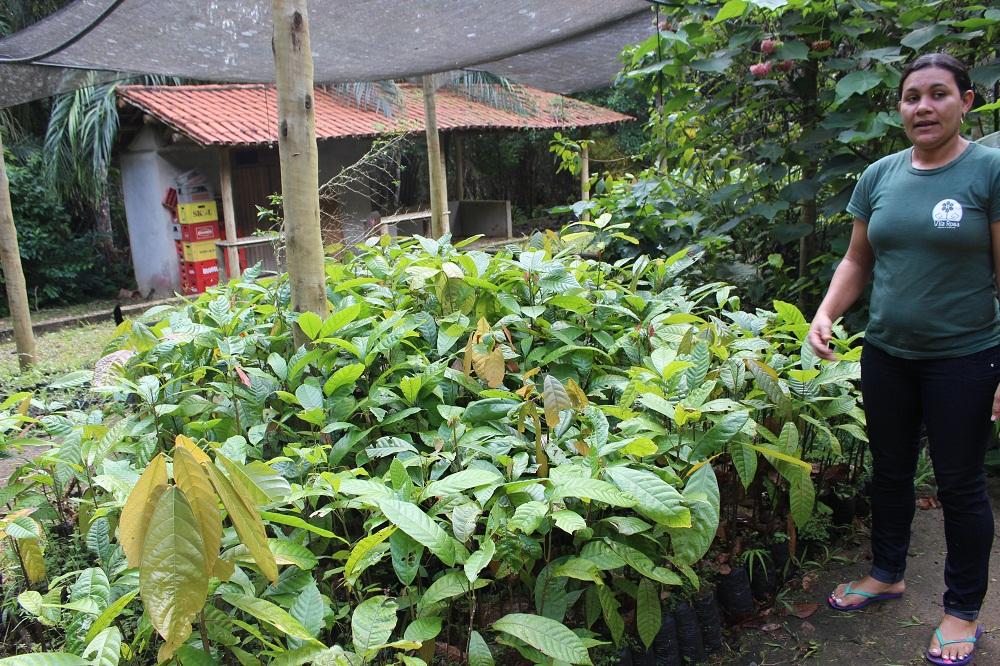 Visite d'une ferme de cacao – Sud de Bahia, Brésil