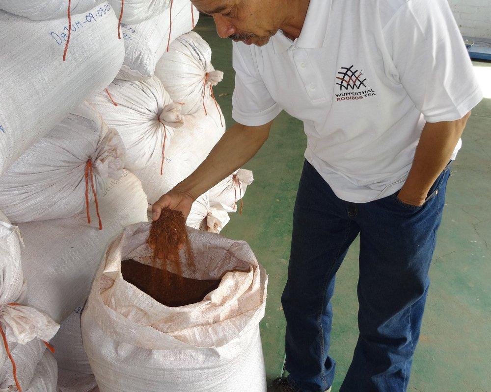 Barend, membre et gérant de la coopérative de rooibos d Wupperthal. Le Rooibos de Wupperthal est reconnu de haute qualité pour son parfum puissant à dominante fruitée