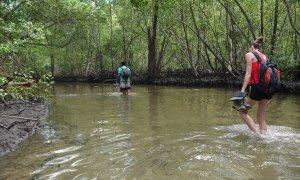 Trekking des pêcheurs – Brésil