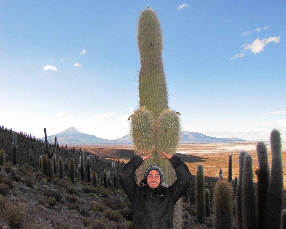 Plus belle vue – Cactus suggestif