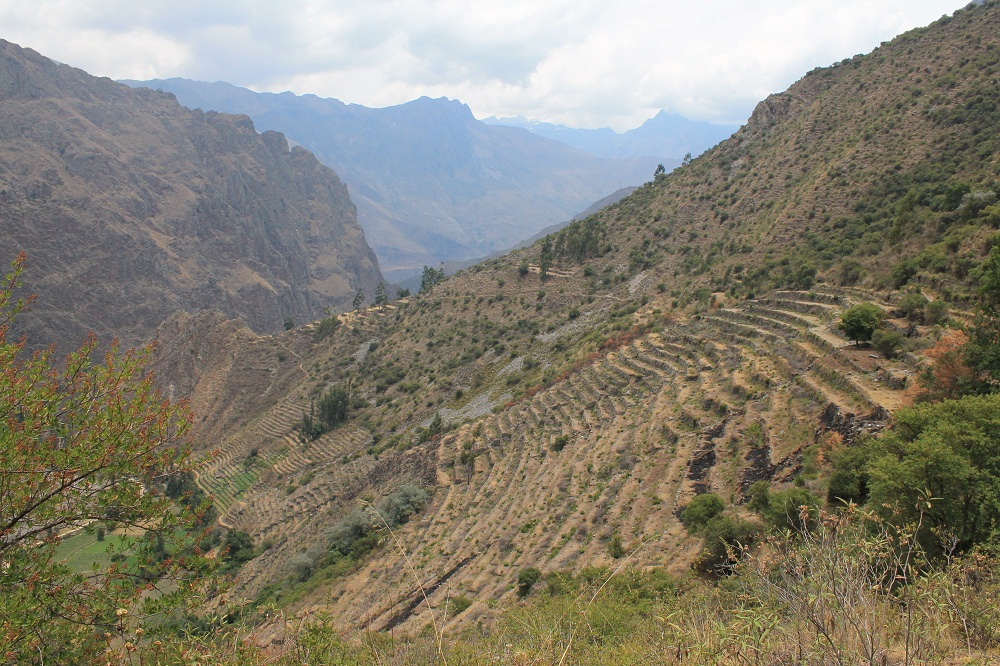 Nous traversons des terrasses incas avant d'arriver à Ollantaytambo