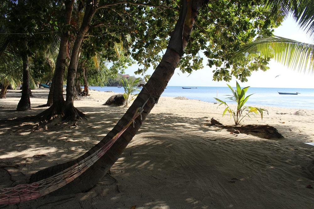 A l'ombre sous les cocotiers de la plage Sureste – Île de Providencia, Colombie