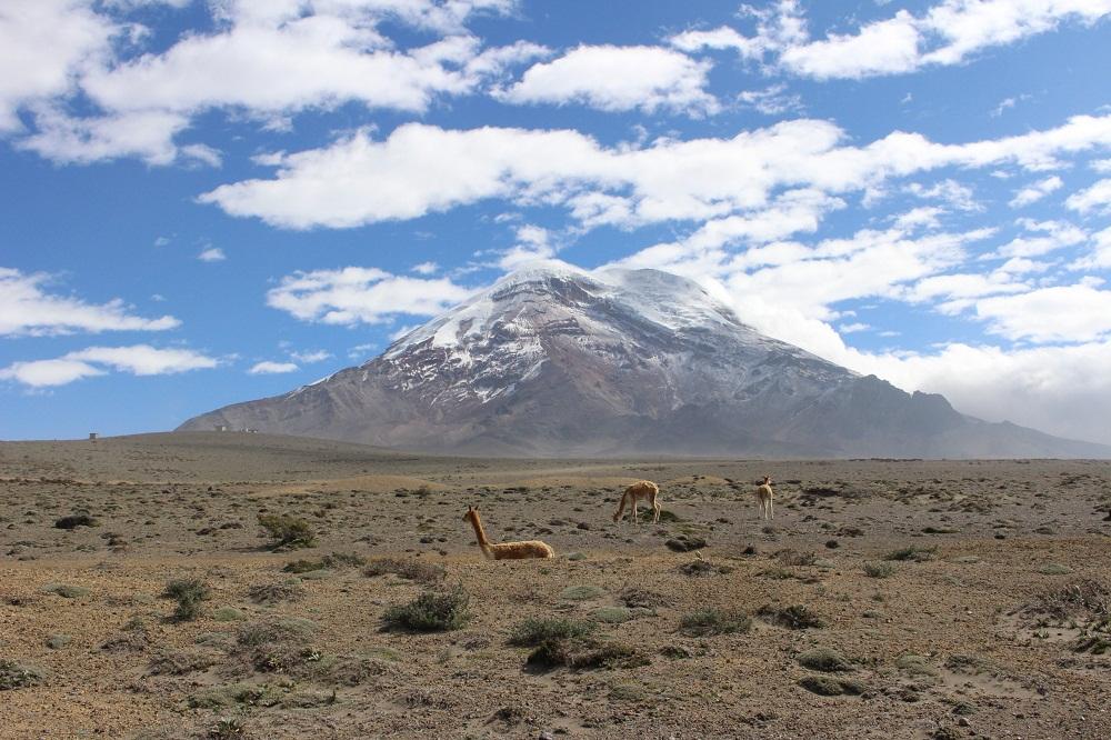 Le Chimborazo, majestueux, du haut de ses 6310 m!