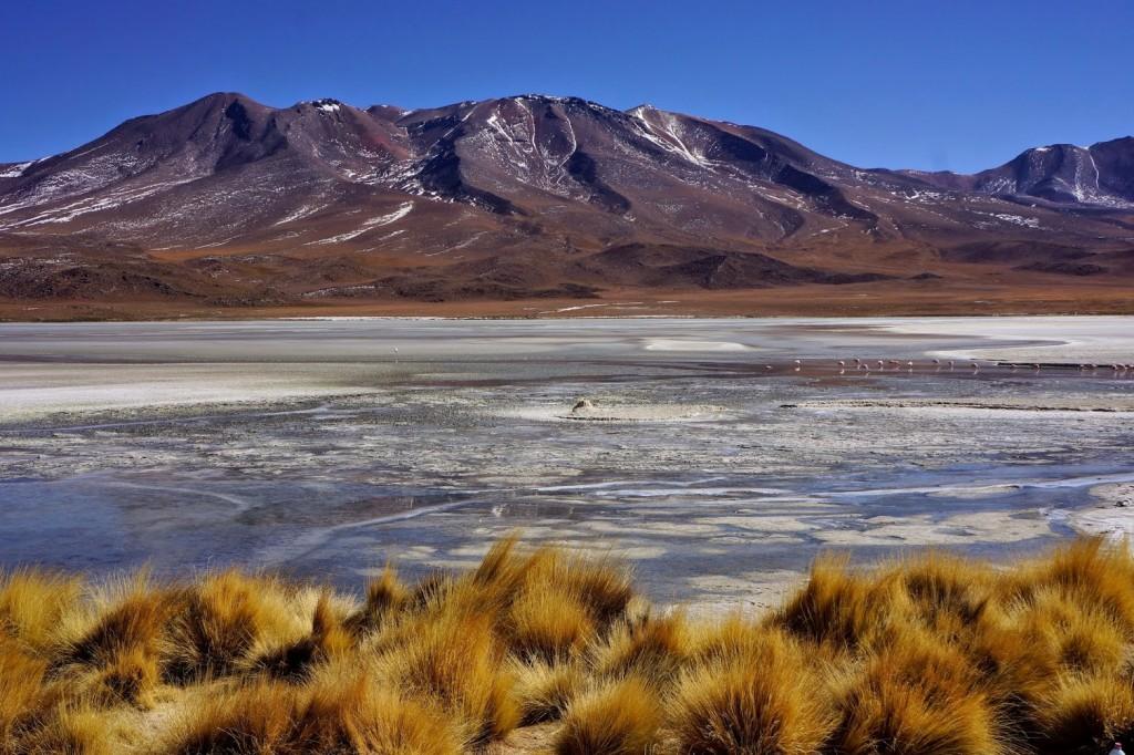 Sud Lipez – Bolivie