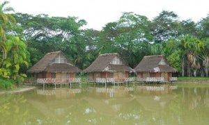 Amazonas – Pérou