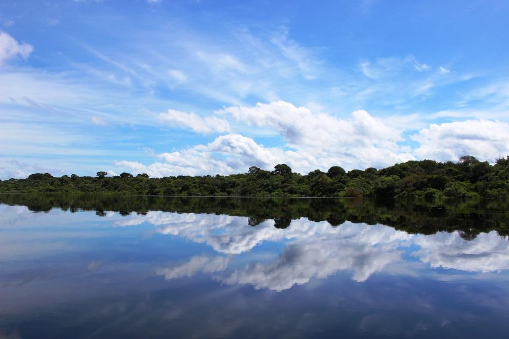 Archipel Anavilhanas en Amazonie, Brésil