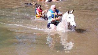 excursion à cheval dans le Minas Gerais Brésil