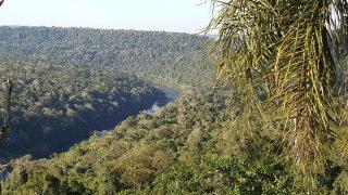 Vue panoramique sur le Río Yabotí Guazú et sur la jungle – Saltos del Moconá, Argentine