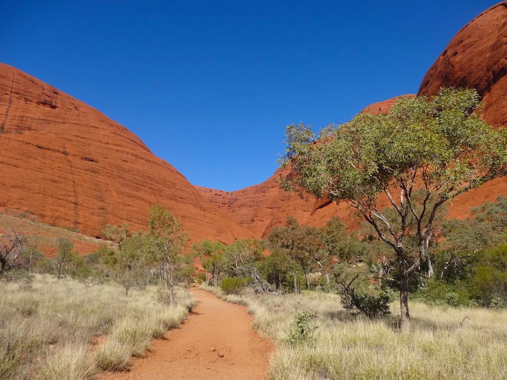 Au beau milieu des dômes de Kata-Tjuta – voyage en Australie