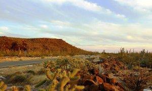 Voyage en Basse Californie au Mexique