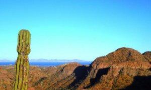 Panorama de Basse Californie au Mexique