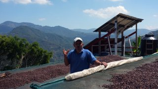 Bernie, expert en café made in Costa Rica