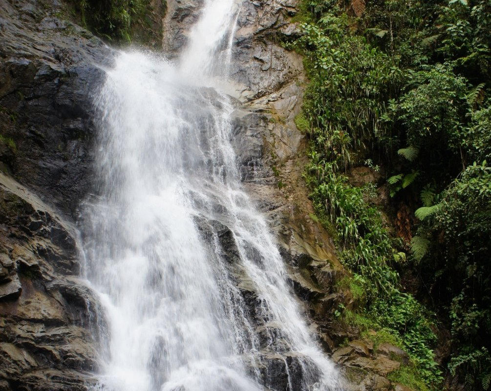 Cascade dans le parc du Podocarpus – Equateur