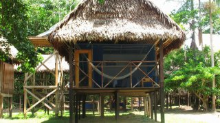 Bungalow du Muyuna Lodge au cœur de la Jungle au Pérou