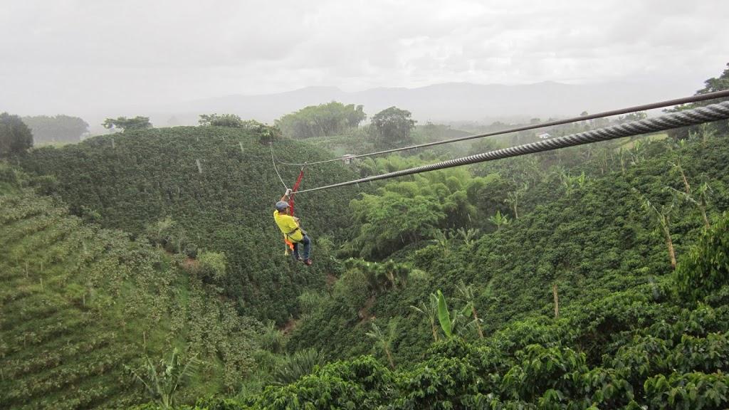 Canopy au dessus des champs de café en Colombie