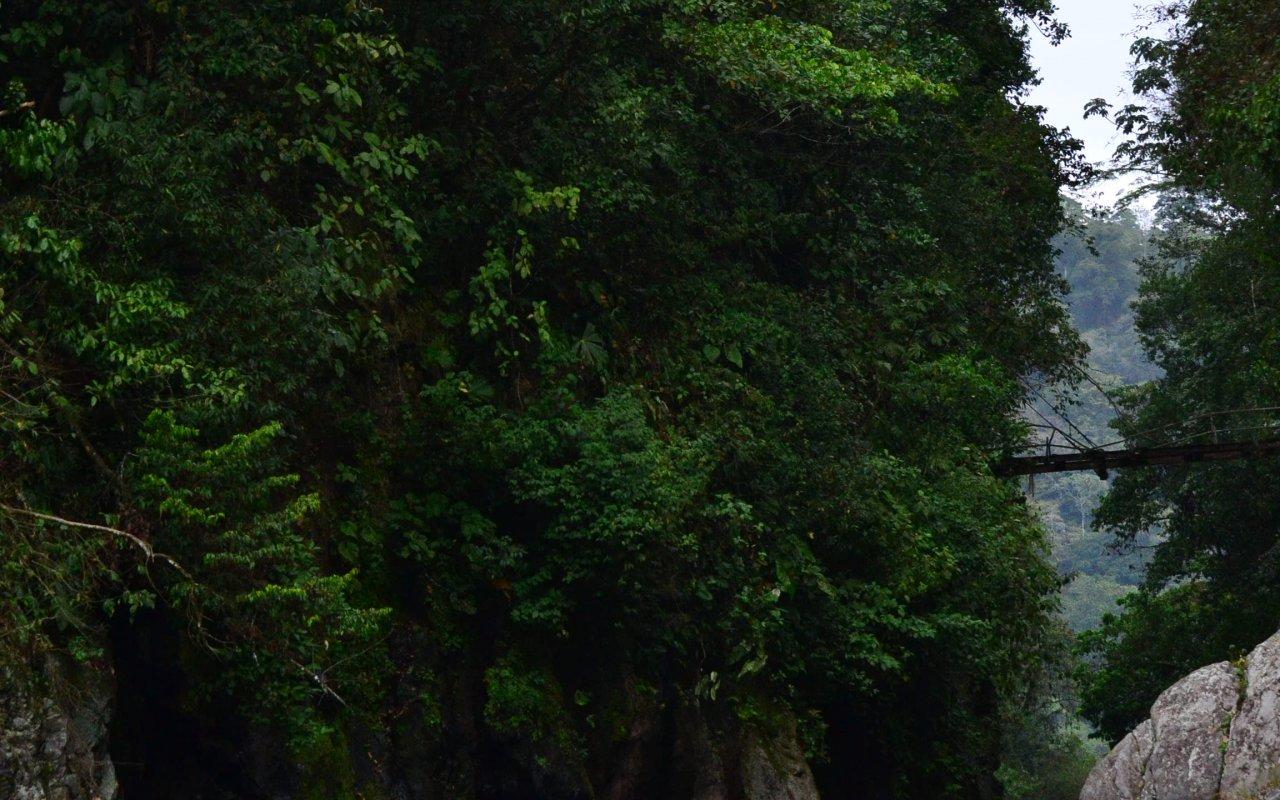 Descente des canyons, rio Pacuare, Costa Rica