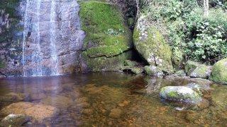 Brésil : Trek au parc national Serra dos Orgãos