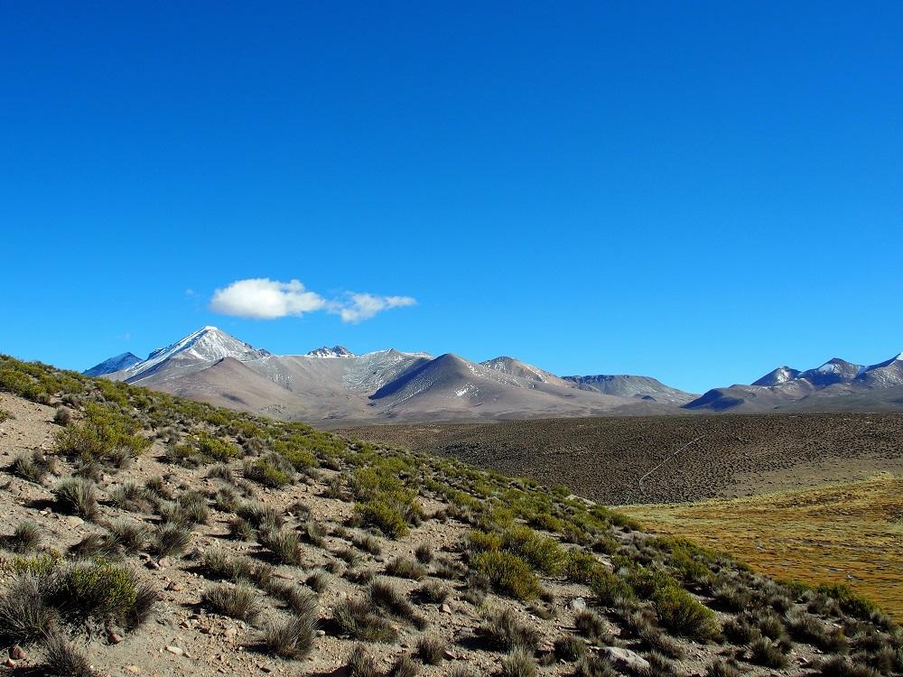 Chili Grand Nord – Randonnée au Bofedal de las Cuevas