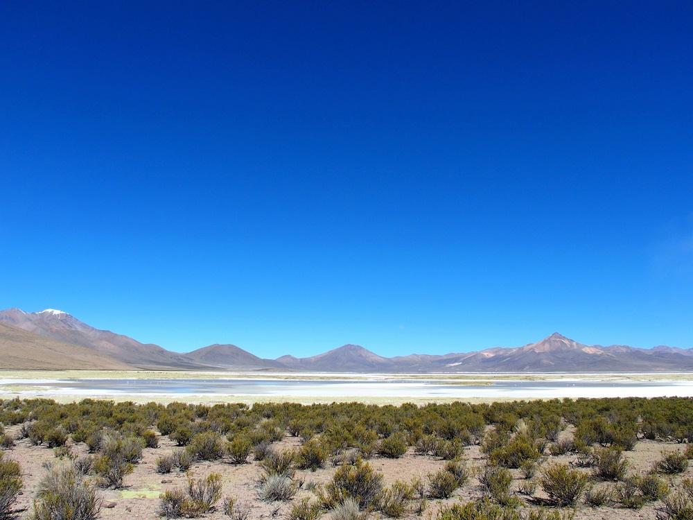 Chili Grand Nord – Salar Surire