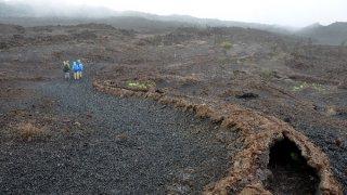 Circuit nature et volcans en Equateur – Galapagos
