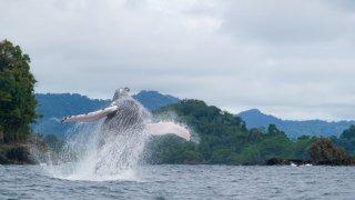 À l'aventure sur la côte pacifique colombienne !