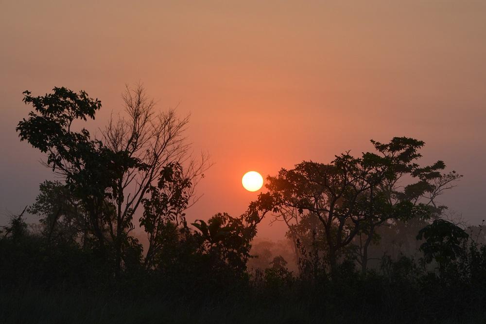 Coucher de soleil sur la pampa – Amazonie bolivienne
