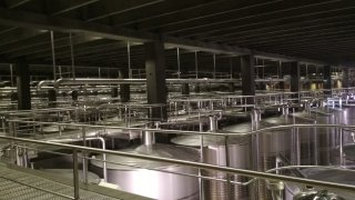 Cuves en inox utilisées pour la vinification dans la bodega Campo Viejo – La Rioja