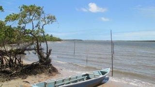 Embarquement vers la mangrove – Baia da Traiçao