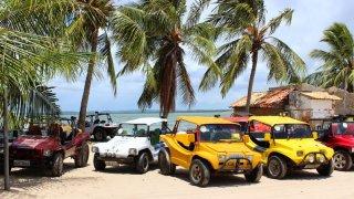 Excursion en Buggy à Mangue Seco – Brésil