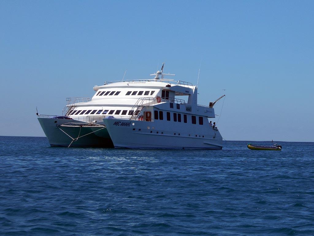 Croisière Galapagos sur le navire Anahi