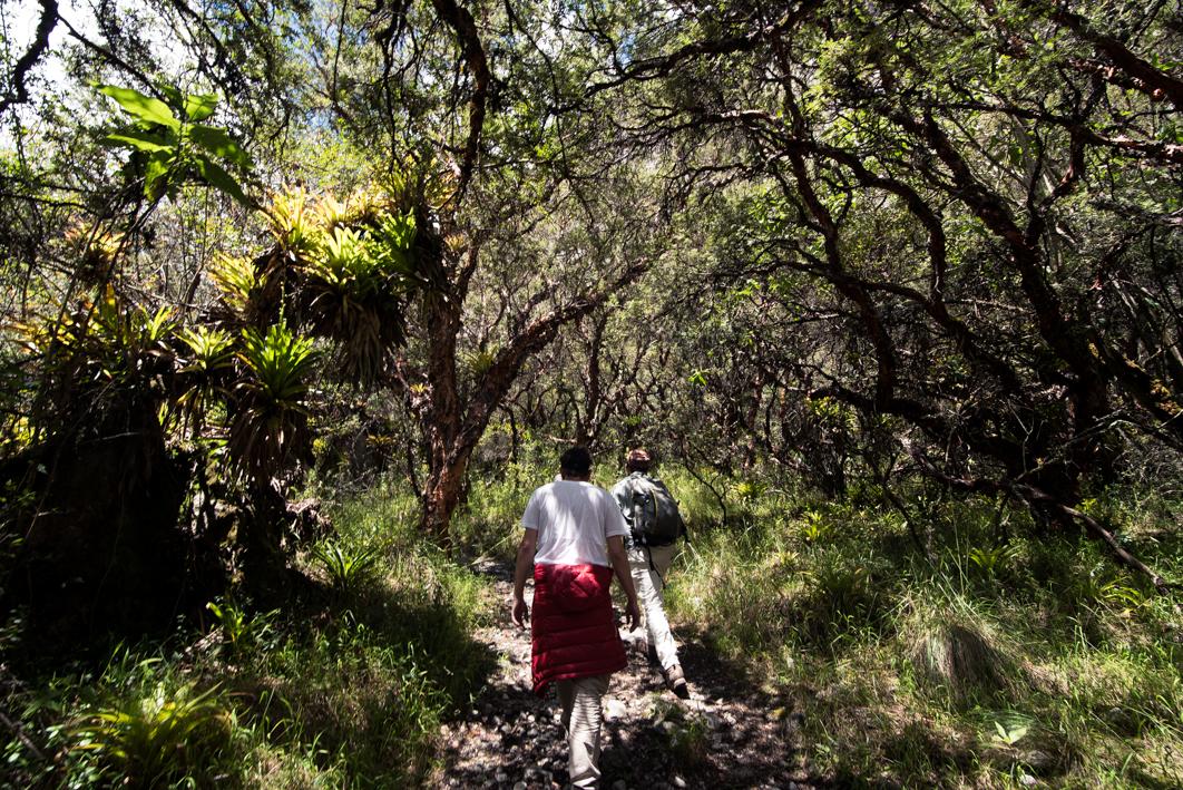 La marche Maria Josefa dans le parc du Huascaran – Huaraz, Pérou