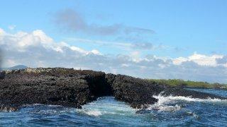 îles Galapagos – Equateur