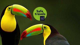 Obtention du label «Safe Travels» par notre agence de voyage au Costa Rica