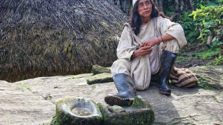 Indien Kogui, toujours en train de mâcher la Coca