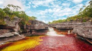 La rivière la plus belle du monde (on vous avait prévenu) – Caño Cristales, Colombie