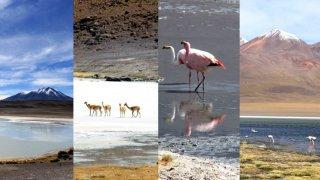 La route des joyaux en Bolivie