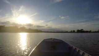 Immersion dans le Pantanal nord au Brésil