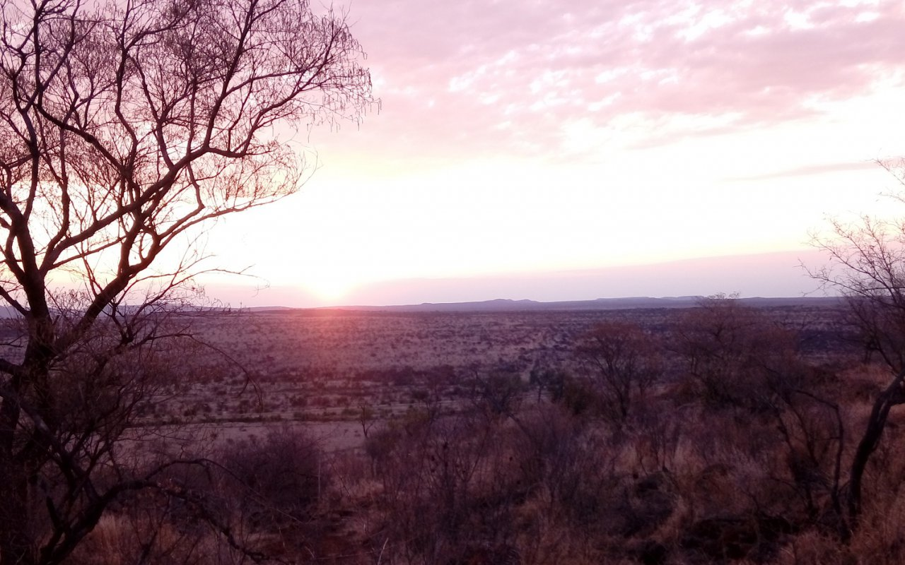 La Savane à perte de vue – Voyage au Limpopo