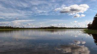 Lac Corrientes – Forêt amazonienne, Iquitos, Pérou