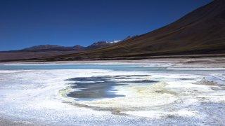 Laguna Blanca – Lipez
