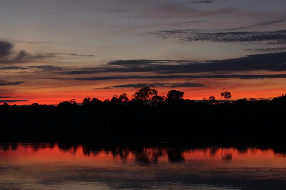 L'aube en Amazonie au Brésil