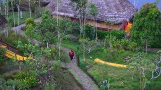 Lodge au cœur du Parc National Yasuni – Equateur