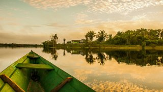 Nordeste : Marajó à dos de buffles au Brésil