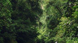 Marche à travers la rivière vers Yorkin